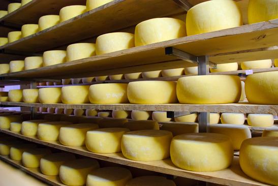 wat zit er in kaas